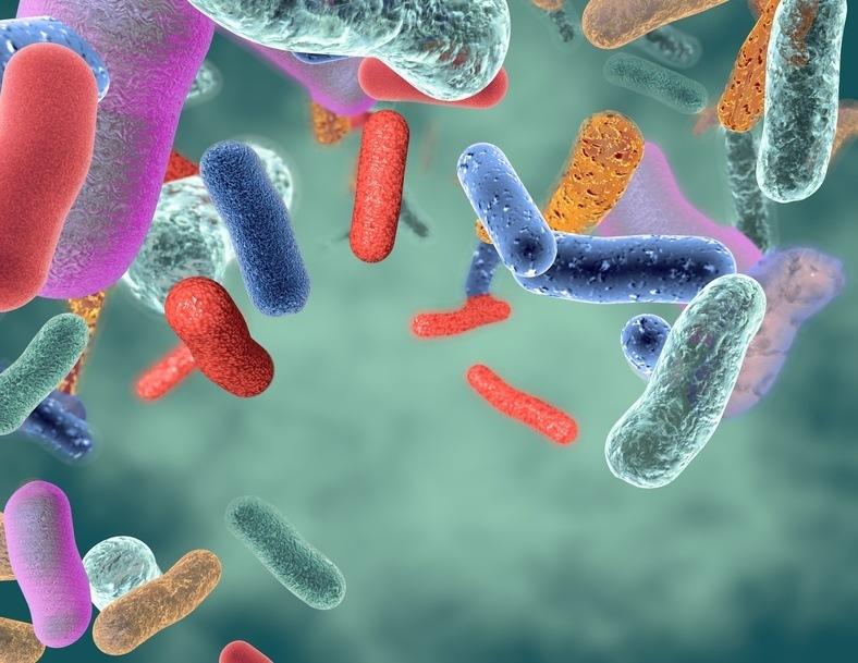 bacteries benefiques